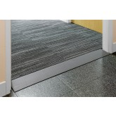 Threshold Ramp 100mm Length